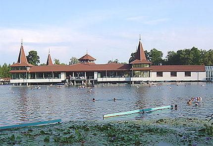 Le lac thermal d'Héviz