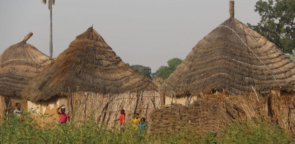 Tour de la Gambie en voiture