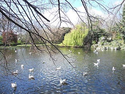 Parc St Stephen's Green