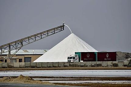 Walvis Bay Salt