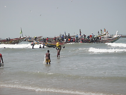 Arrivée des pirogues sur la plage de Kafountine