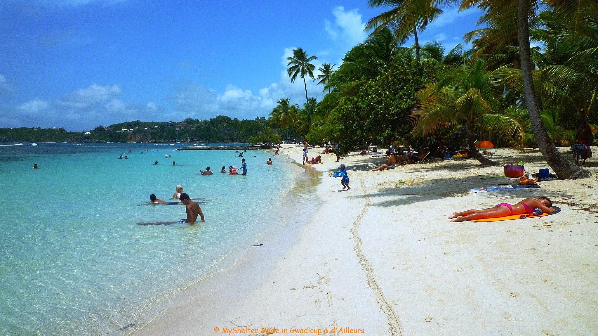 Farniente sur la plage sainte anne guadeloupe plages mer sainte anne grande terre - Sainte anne guadeloupe office du tourisme ...