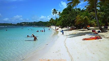 Farniente sur la plage sainte anne guadeloupe plages - Sainte anne guadeloupe office du tourisme ...