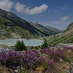 Vallée de Tourtemagne, Haut-Valais, Suisse