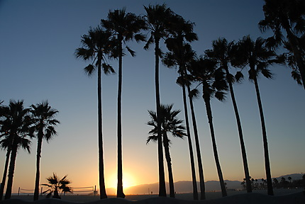 Sunset sur Venice