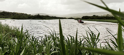 Barque dans les marais de Kaw-Roura