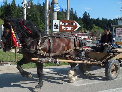 Transport traditionnel en route vers le monastère