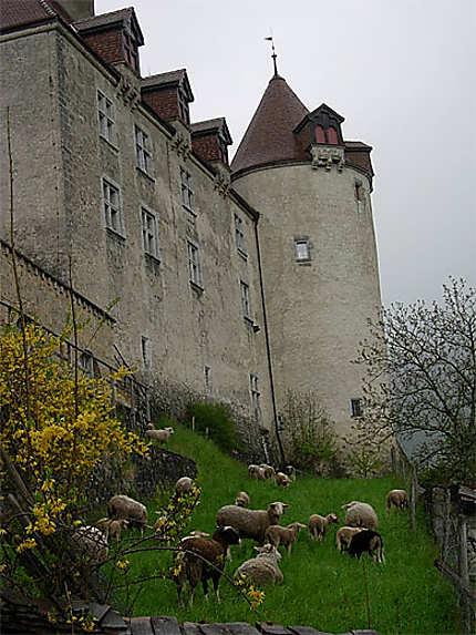 Gruyères et son château
