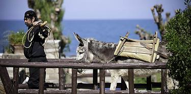 La Crète : entre traditions et écotourisme - 10 jours