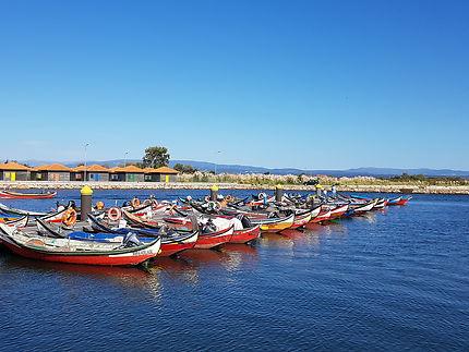 Petit port de pêche près d'Aveiro