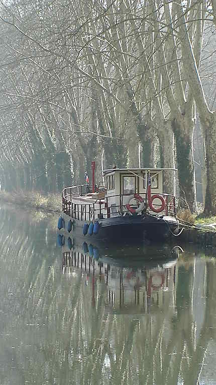 Le long du canal de Garonne