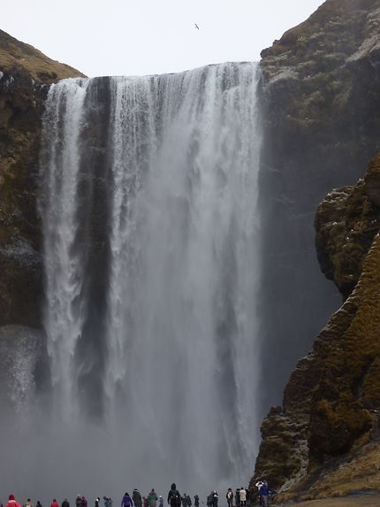 Cascade au sud de l'Islande