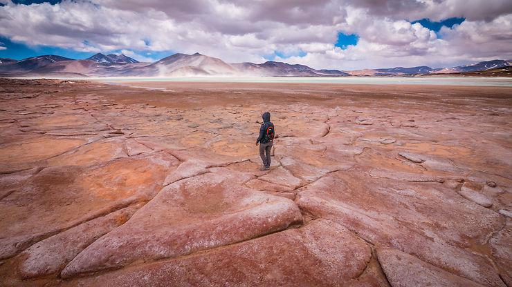 Seul dans l'Atacama, Chili, par dhaix