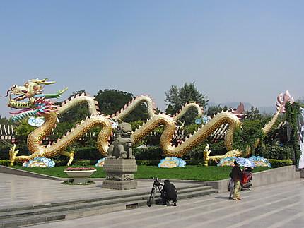 Dragons à Lanzhou