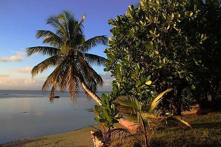 Plage magnifique à l'Île aux Nattes