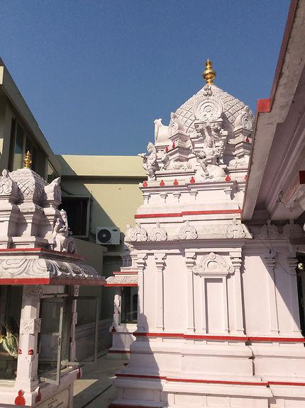 Yogananda Ashram, Inde