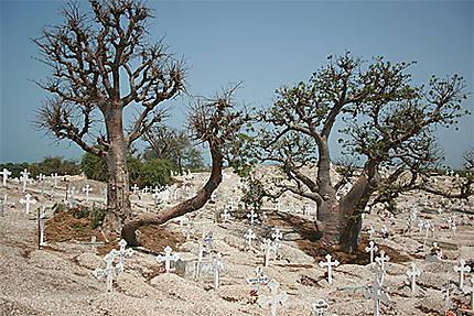 Le cimetière coquillage