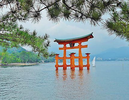 Torii du sanctuaire d'Itsukushima
