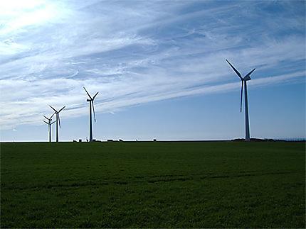 Les éoliennes de Fécamp