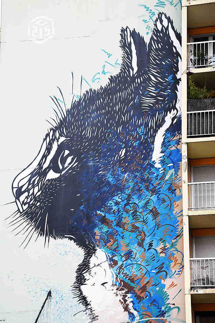 Chacun cherche… le chat bleu