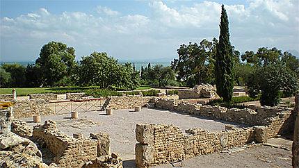 Vue sur Carthage