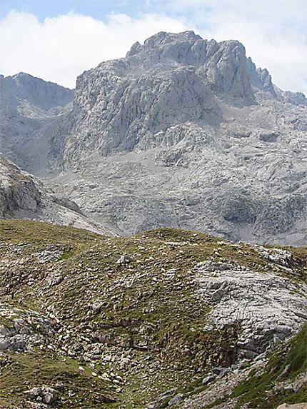 Pics d'Europe, Mirador del cable, moutons