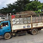 Transport d'éléphant
