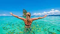 Nos meilleurs sports de plongée