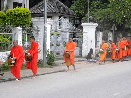Cérémonie du matin, les moines de Luang Prabang