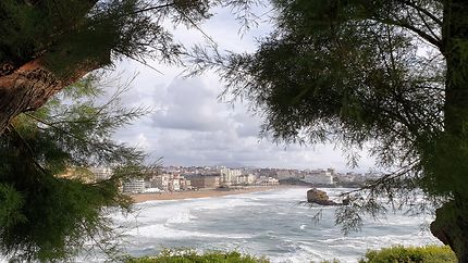 Plage à Biarritz