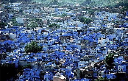 Jodpur la ville bleue