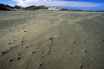 Virgin Sand
