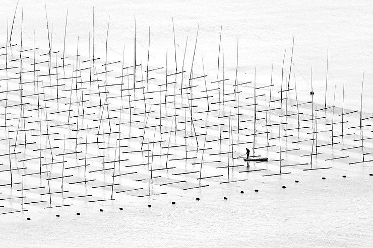 Aquaculteur, côte sud de la Chine