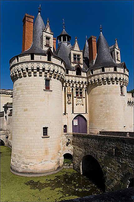 Château de Dissay