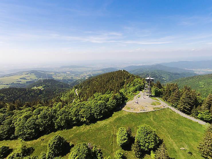 Autour de Fribourg : vignes et cimes