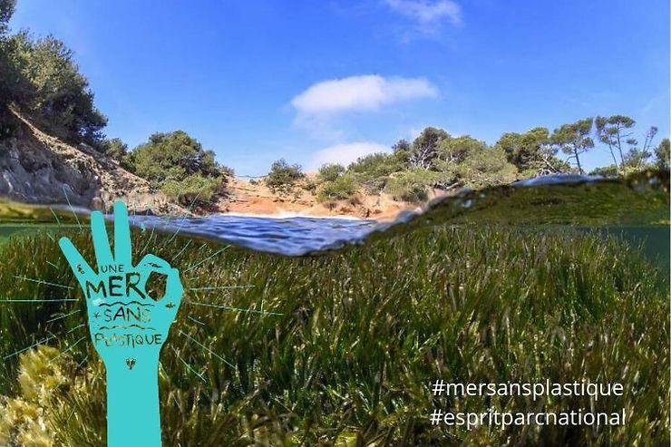 Méditerranée - Parc national de Port-Cros : une mer sans plastique cet été