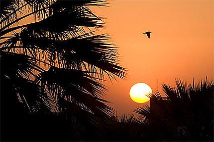 Coucher de soleil à Arequipa