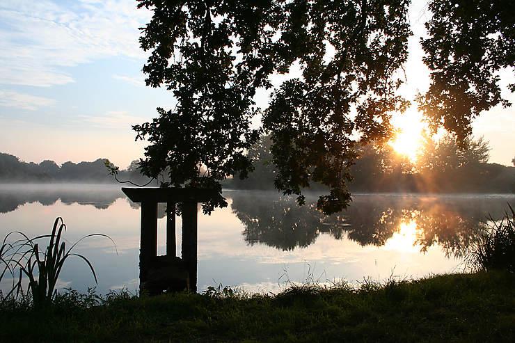 Balade en Brenne, autour des étangs (Indre)