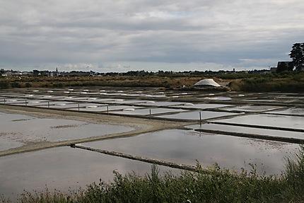 Marais salants