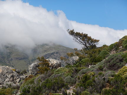 Randonnée dans les montagnes de l'ouest de l'île