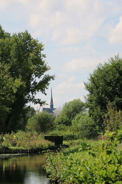 La cathédrale vue des Hortillonnages à Amiens