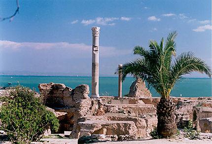 Carthage-Les Thermes d'Antonin