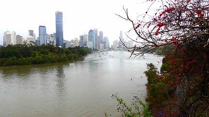 Vue sur Brisbane