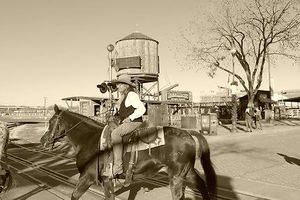 Cowboy à Fort Worth Texas