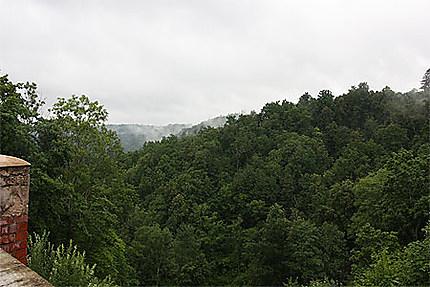 Forêt entourant le château