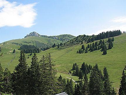Panorama sur Thollon les Mémises