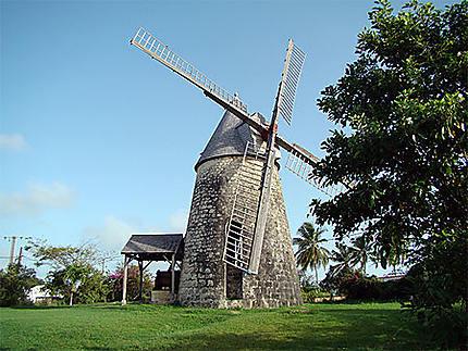 Un moulin à Marie Galante
