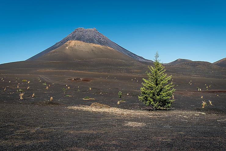 Volcan au Parc naturel de Fogo (Île de Fogo)