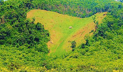 Laos au Coeur