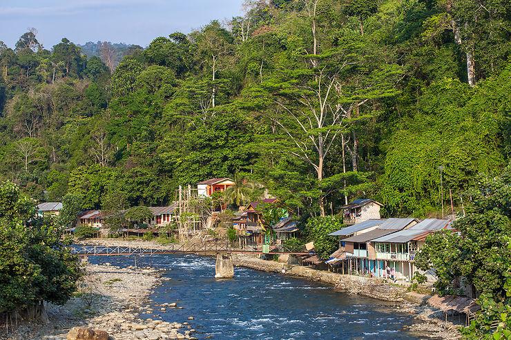 Bukit Lawang et le parc national du Gunung Leuser